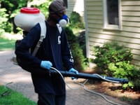 Mosquito Adulticide Spray Application Using Backpack Spray Equipment